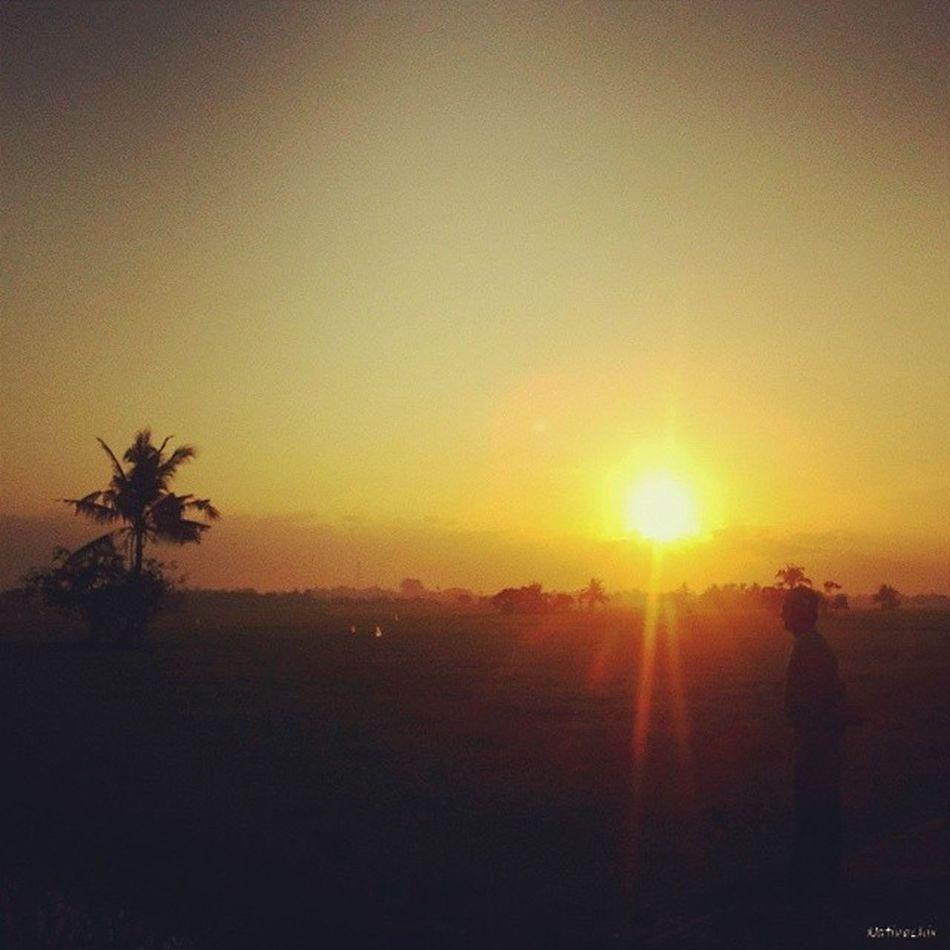 Sunrise today. Sunrise Sunrisetoday Sunriselover Naturelover Photooftheday Farmer Ricefield Silhouette Bulakenyo BulacanBulacan Philippines @loves_philippines @tuklas_pilipinas @photosharingcommunity @photosharingsunsets