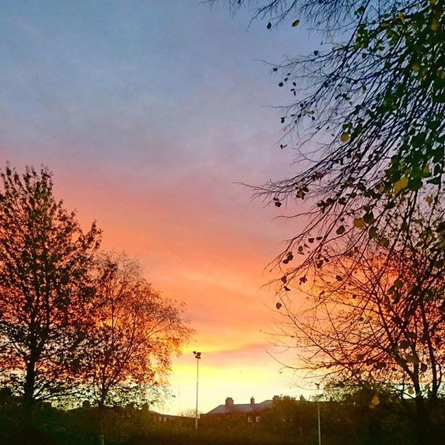 Sky_vibrance Sky_painters Popular Photos Master_shots All_sunrise_sunset Sky And Clouds Ireland🍀 Morning Sky Nature_obsessions Photowall