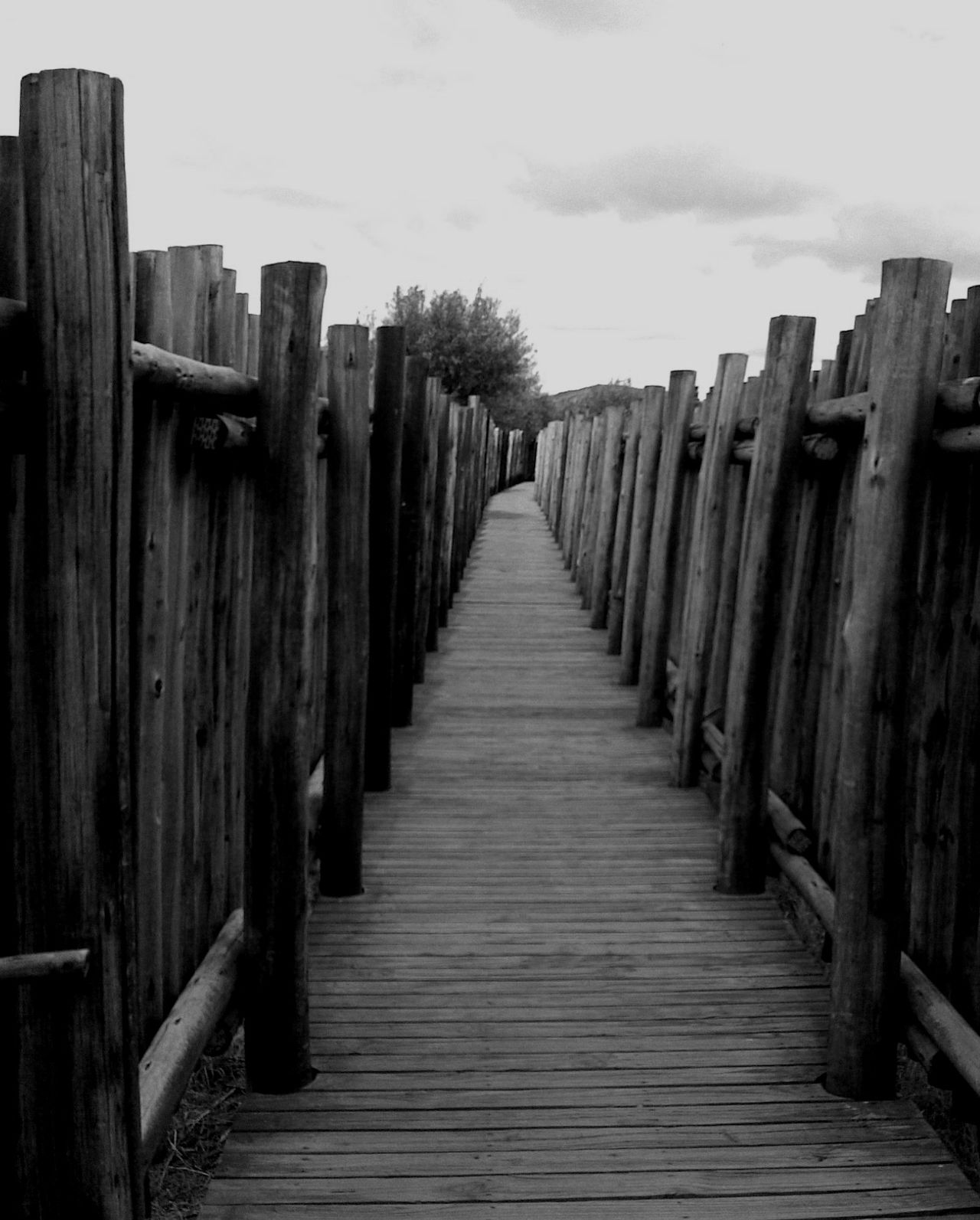 Boardwalk Bridge Built Structure In A Row Pathway The Way Forward Wood - Material Wooden Wooden Pathway Wooden Post First Eyeem Photo