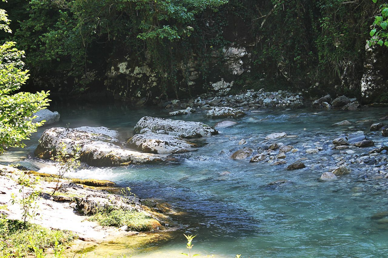 #intsira #river #tsalenjikha Beauty In Nature Day Flowing Flowing Water Forest Growth Idyllic Motion Nature No People Non Urban Scene Non-urban Scene Outdoors Plant Rippled River Scenics Stream Tranquil Scene Tranquility Tree Water