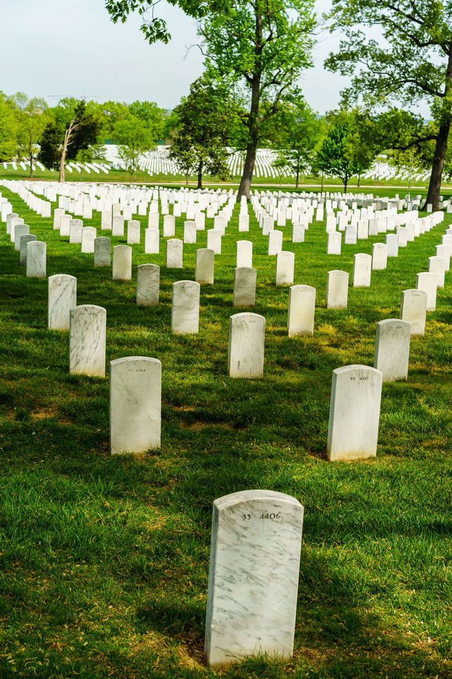 Arlington National Cemetery Cemetery Death Field Grass Grassy Graveyard Graveyard Beauty Green Color In A Row Lawn Lawnmower Memorial Memories Military Mower Paris Place Of Burial Soldiers Spring Stone Material Tombstone Tree Washington, D. C. Worker