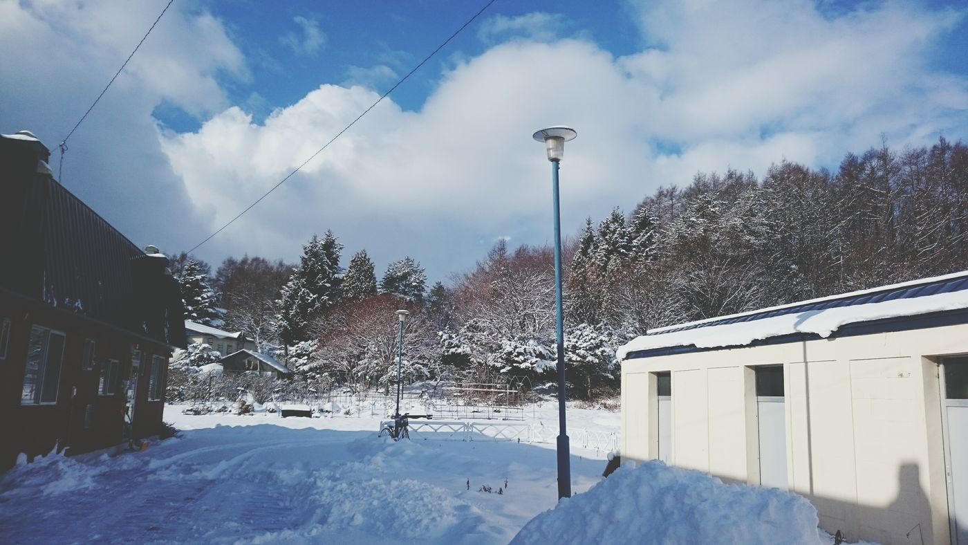 なおのしんphoto 安平町追分地区 今朝も雪 Enjoying Life