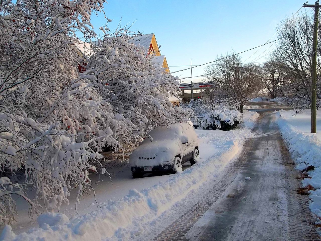 Scene from an East Coast village after a big snow storm. After The Storm Bare Tree Beauty In Nature Cold Temperature Day Nature No People Outdoors Picturesque Village Sky Snow Snow Covered Snow Covered Streets Snow Covered Trees Snow Day Snow Storm Snowstorm Tree Winter Winter Winter Street Winter Wonderland Winter Wonderland ❄ Wintertime