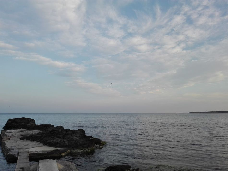 Blue Is the Warmest Color Beauty In Nature Day No People Outdoors Rocky Coastline Rocky Shore Rocky Shoreline Rocky Shorelines Sea Sea And Rocks Sea And Sky Sea Life Sea Side Sea View Sea_collection Seagull Seagulls Sealife Seascape Seascape Photography Seashore Seaside Season  Seasons Seaview