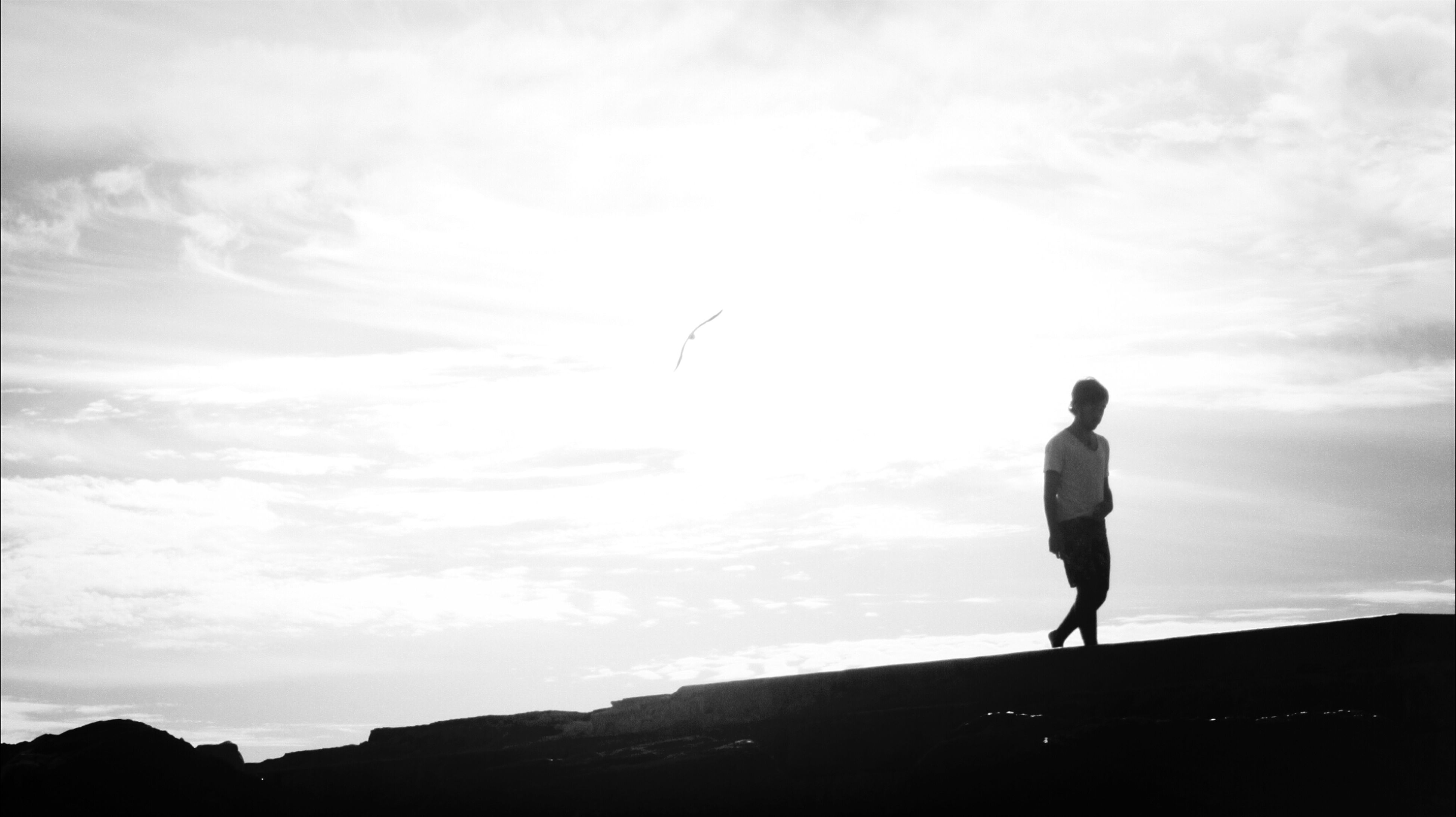 silhouette, sky, full length, men, lifestyles, standing, leisure activity, cloud - sky, rear view, tranquility, nature, tranquil scene, cloud, beauty in nature, scenics, walking, low angle view, person