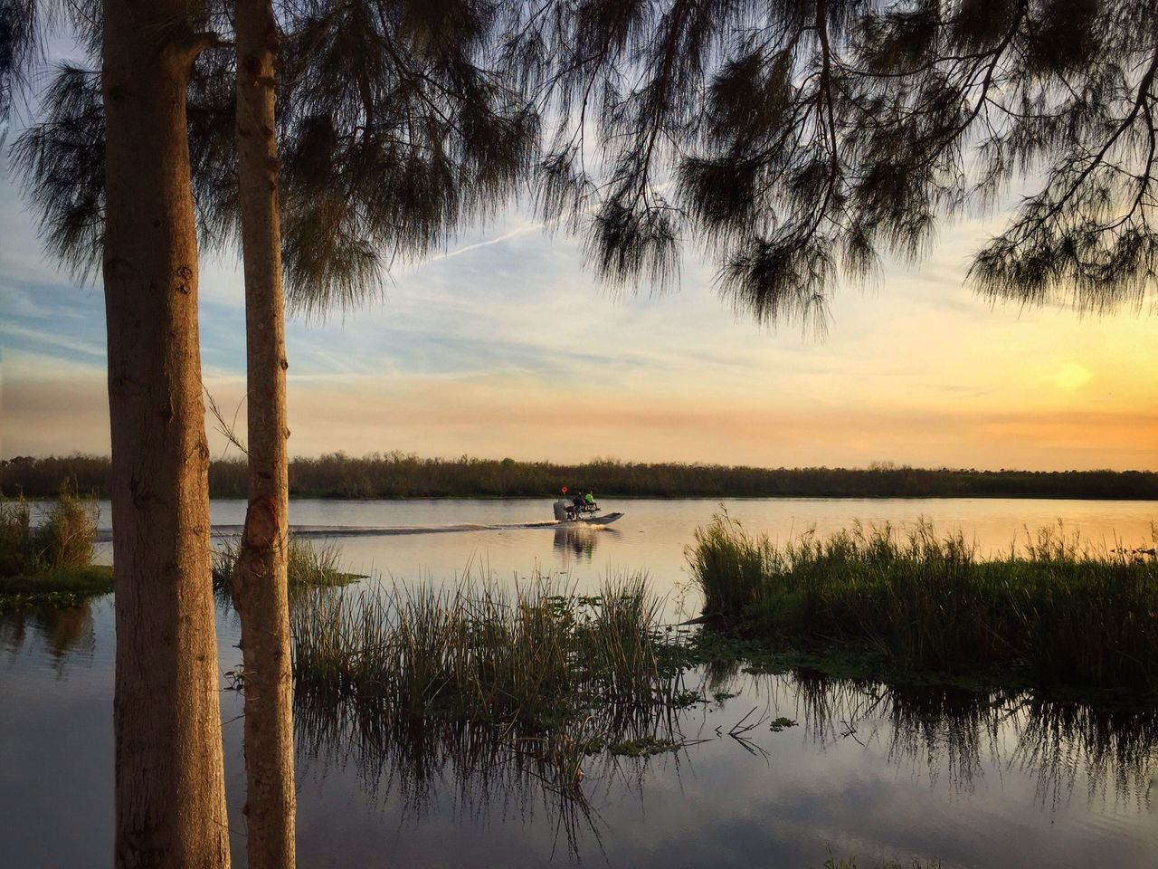 Airboat into the sunset St Johns River Melbourne Florida Airboat Airboat Ride Reflection Tranquil Scene Tranquility Idyllic Florida Nature Florida Landscape Sunset Boat Ride