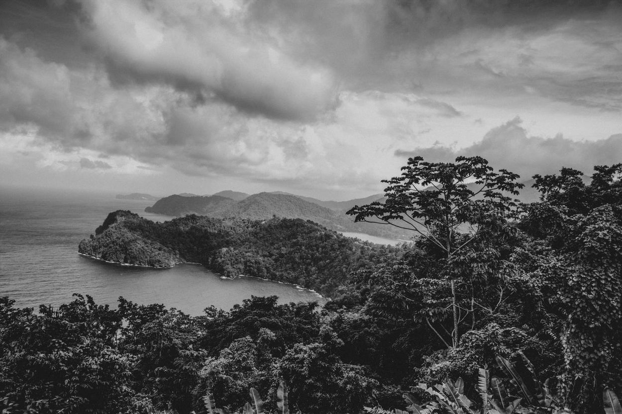 Maracas Beach Trinidad Trinidad And Tobago Beauty In Nature Black And White Black And White Photography Day Landscape Maracas Maracaslookout Nature No People Outdoors Plant Scenics Sea Sky Tranquil Scene Tranquility Tree Water Perspectives On Nature