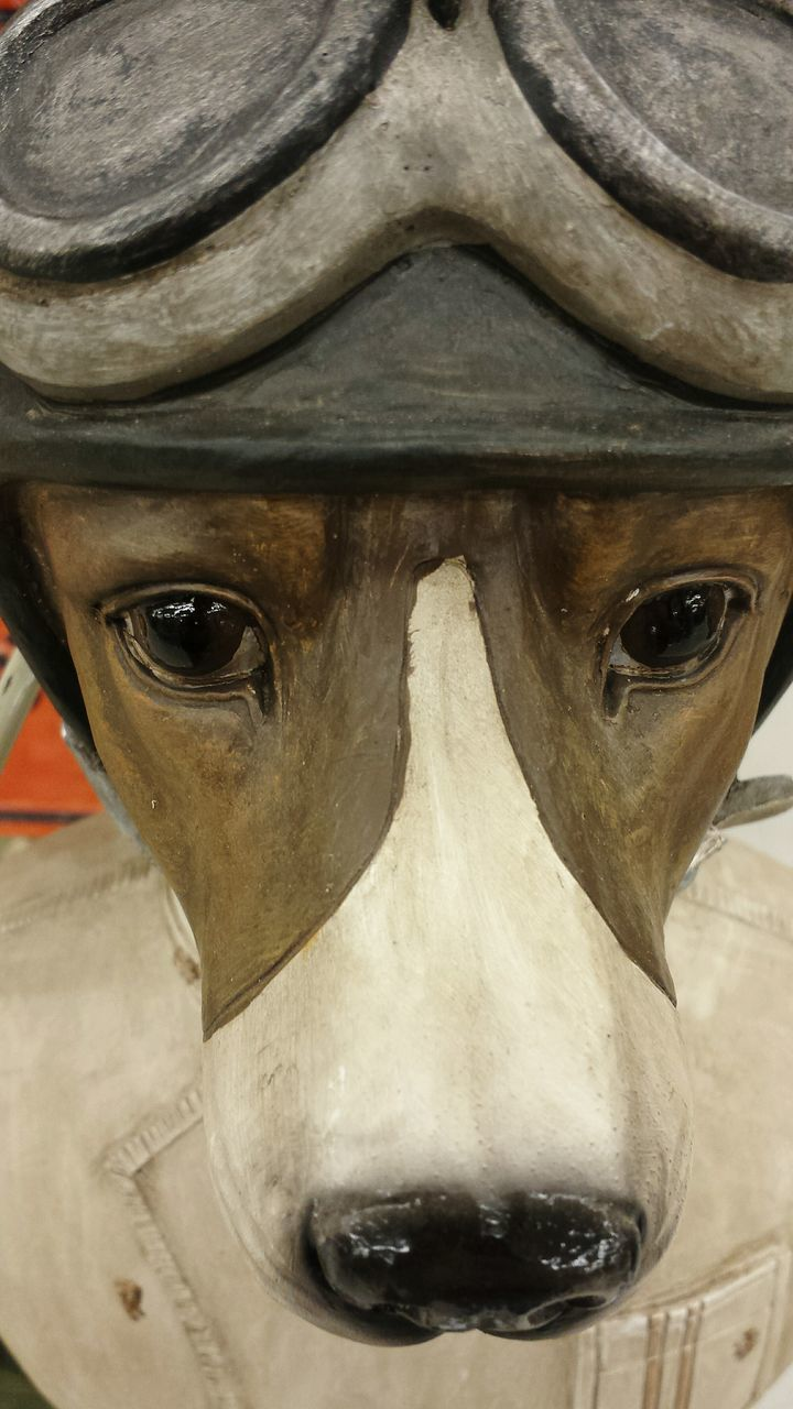 close-up, no people, sculpture, indoors, day, animal themes