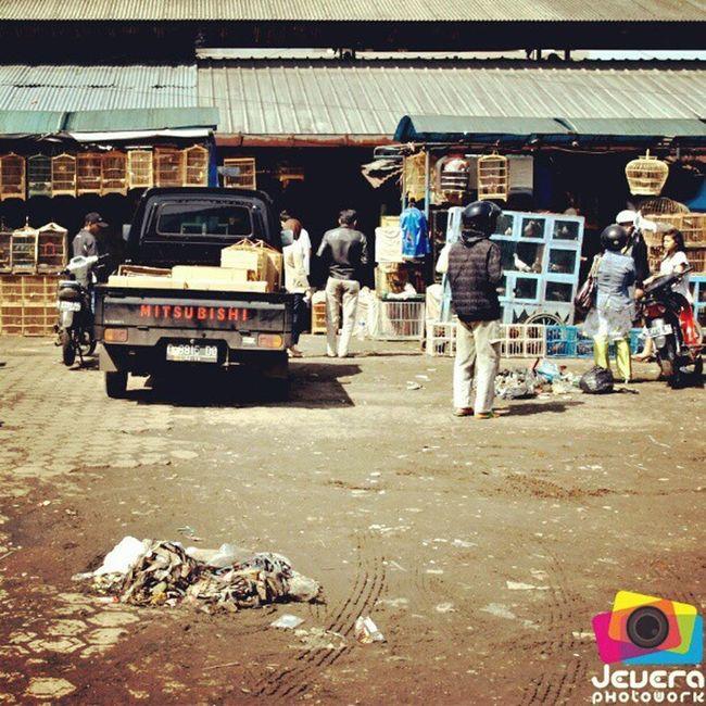 Pasar Burung Sukahaji (Bandung) Pasar Burung Sukahaji Sangkar Bird Market Cage Bandung WestJava Indonesia FadeyJevera