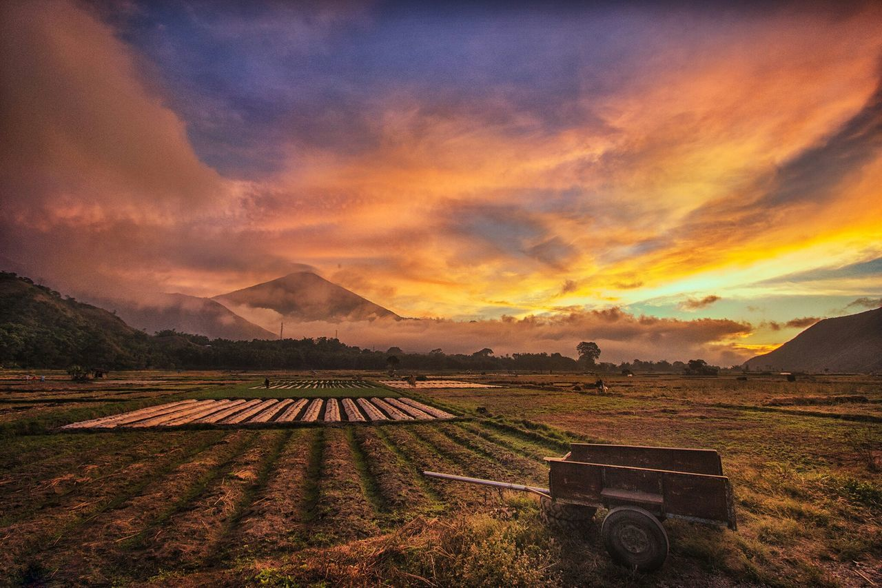 Sunset of sembalun Taking Photos Check This Out Enjoying Life Week On Eyeem Likeforlike Art Gallery Lombokgallery Weekly_feature All_shots Hello WorldWeeklymarket Lombok Island Landscape_photography Landscape_Collection Vscoindonesia  Photography Lomboklandscaper EyeEm Best Shots - Landscape Composite