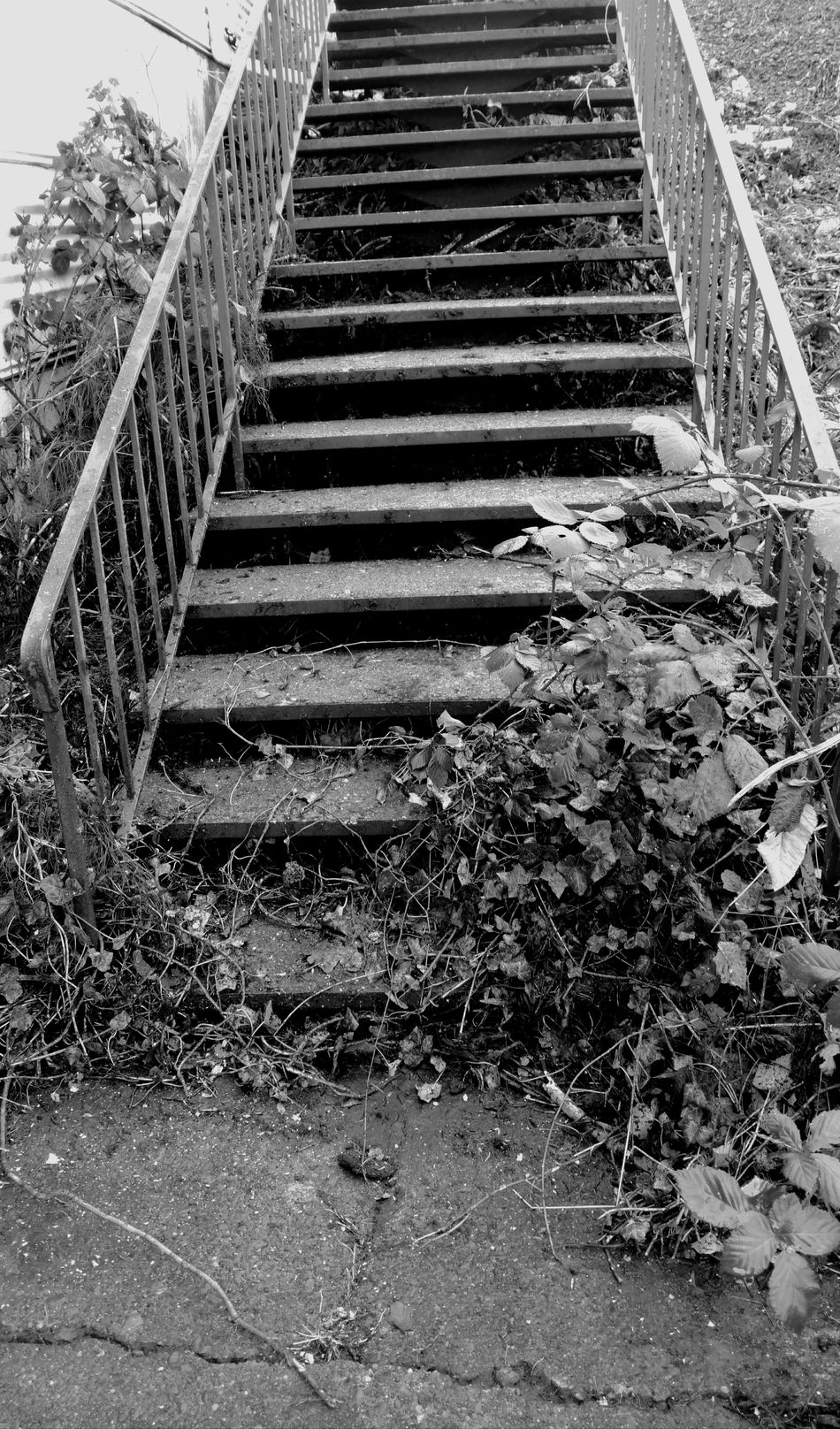 Steps Steps And Staircases Staircase Day No People Outdoors Tranquility Scenics Taking Photos Architecture Light And Shadow Black And White Nature Photography