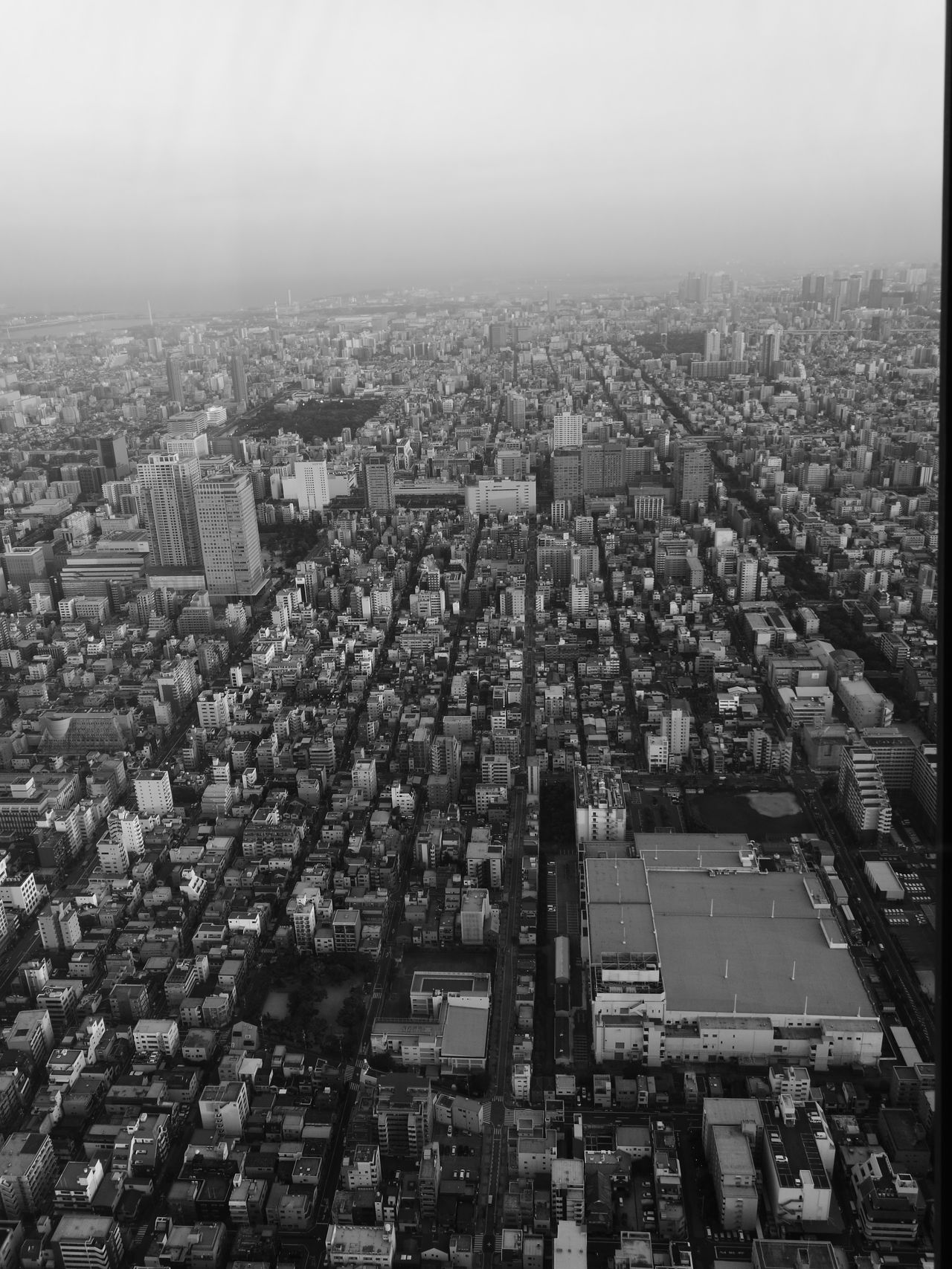 Cityscape City Building Exterior Downtown District Day Tokyo HuaweiP9 Tokyoskytree Evening Time Blackandwhite