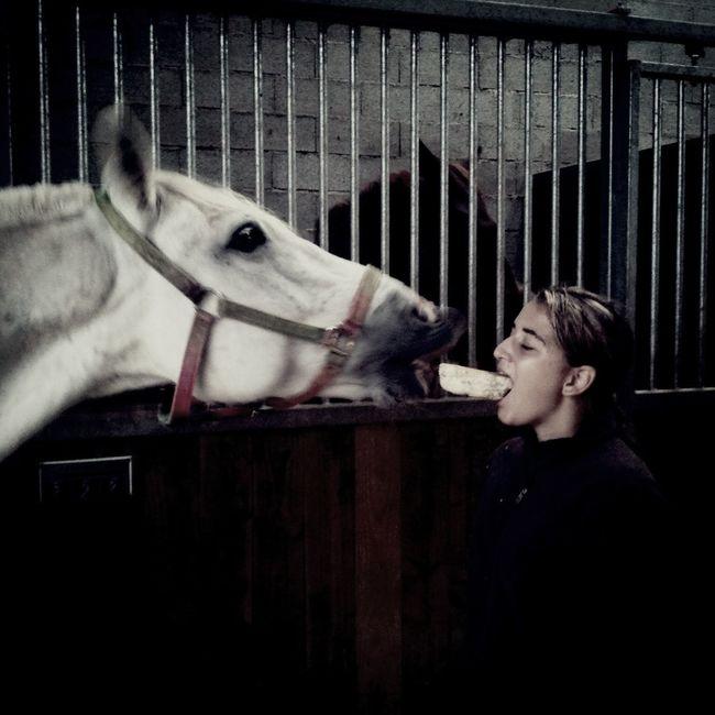 Dites ce que vous voulez sur moi, mais s'il vous plait surveille votre langage quand vous parlez de mon cheval. Mon bébé ! ❤❤