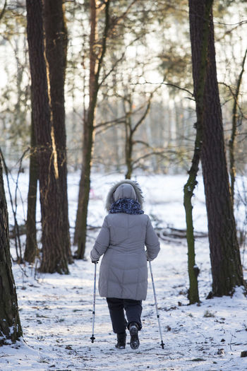 06.01.2017 The Stefan Starzyński Kabaty Woods Nature Reserve Cold Temperature Daily Life Day Forest Kabaty Nature Nature Nordic Walking Outdoor Activity Outdoors Park People Poland Reserve Snow Starzyński Stefan Warsaw Winter WoodLand Woods