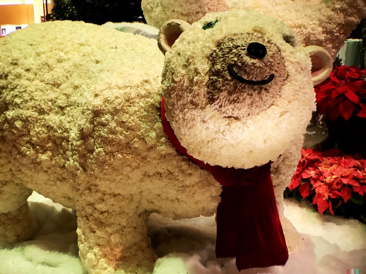 teddy bear, indoors, stuffed toy, no people, close-up, day, freshness