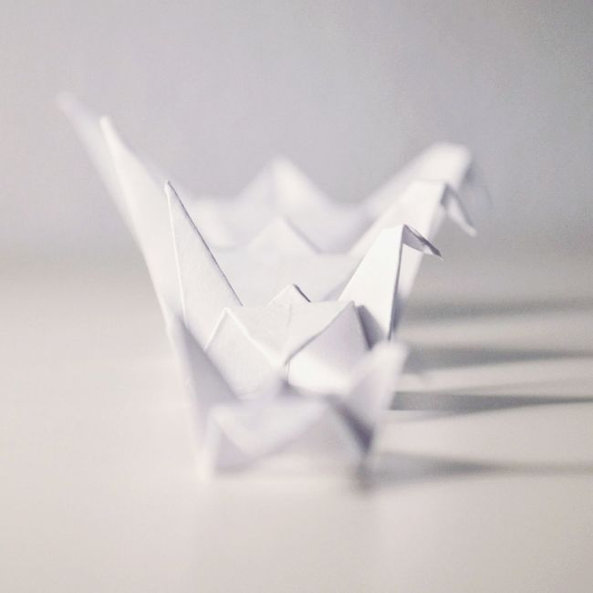 Origami Origamiart Origami Time White White On White Little Things Little Story Check This Out Petite