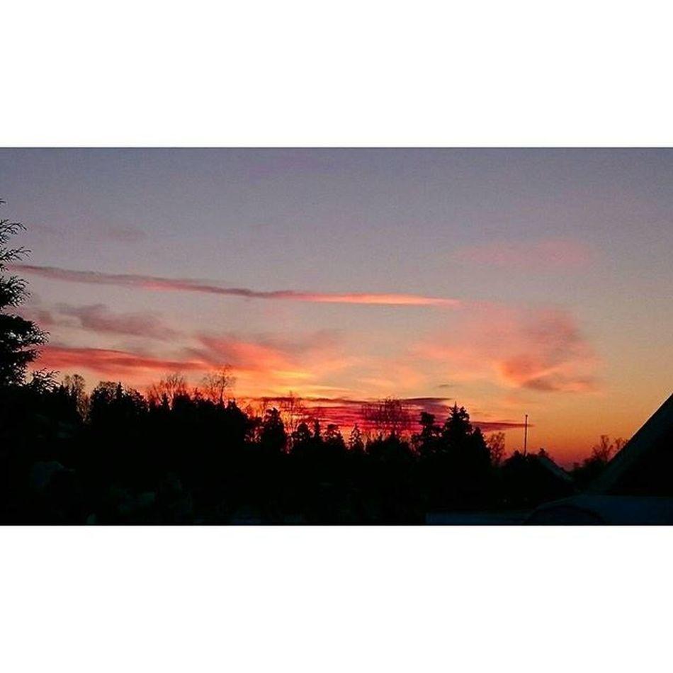 Sunrise Skyporn Skies Morningglory Soloppgang Himmelglød Idyll Magisk Magic Utno Ilovenorway Oslo Oslove Whereinoslo Lookatoslo Oslobilder Detailsofoslo Oslomarka Visitoslo Visitnorway Lifeincolors