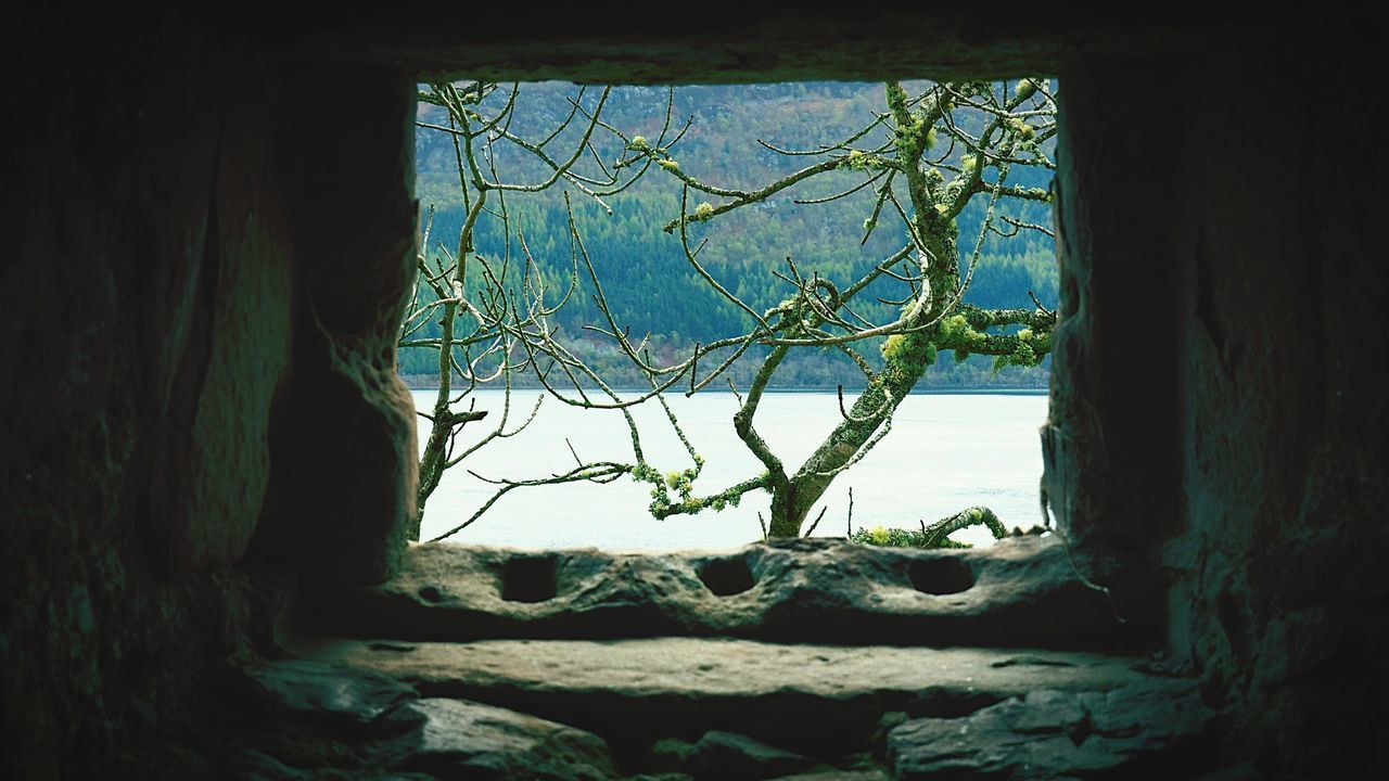 Scottish Highlands Loch Ness Water Window No People Tree UrquhartCastle Scotland 💕