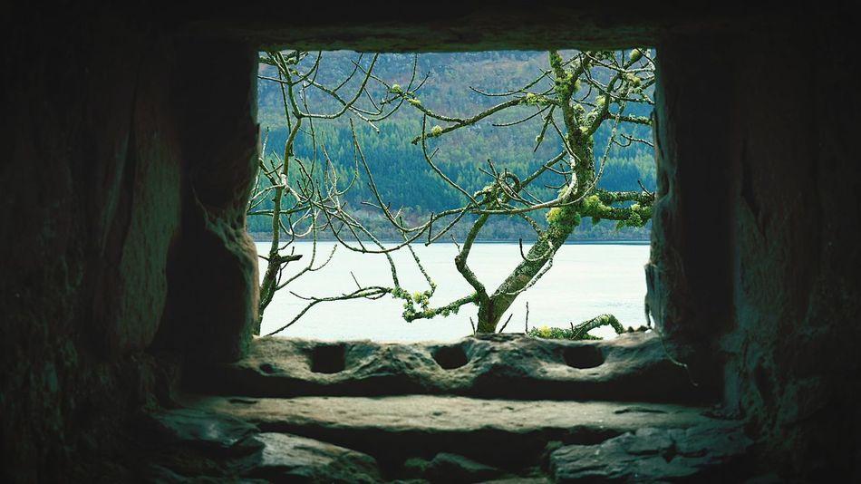 Scottish Highlands Loch Ness Water Window No People Tree UrquhartCastle Scotland 💕