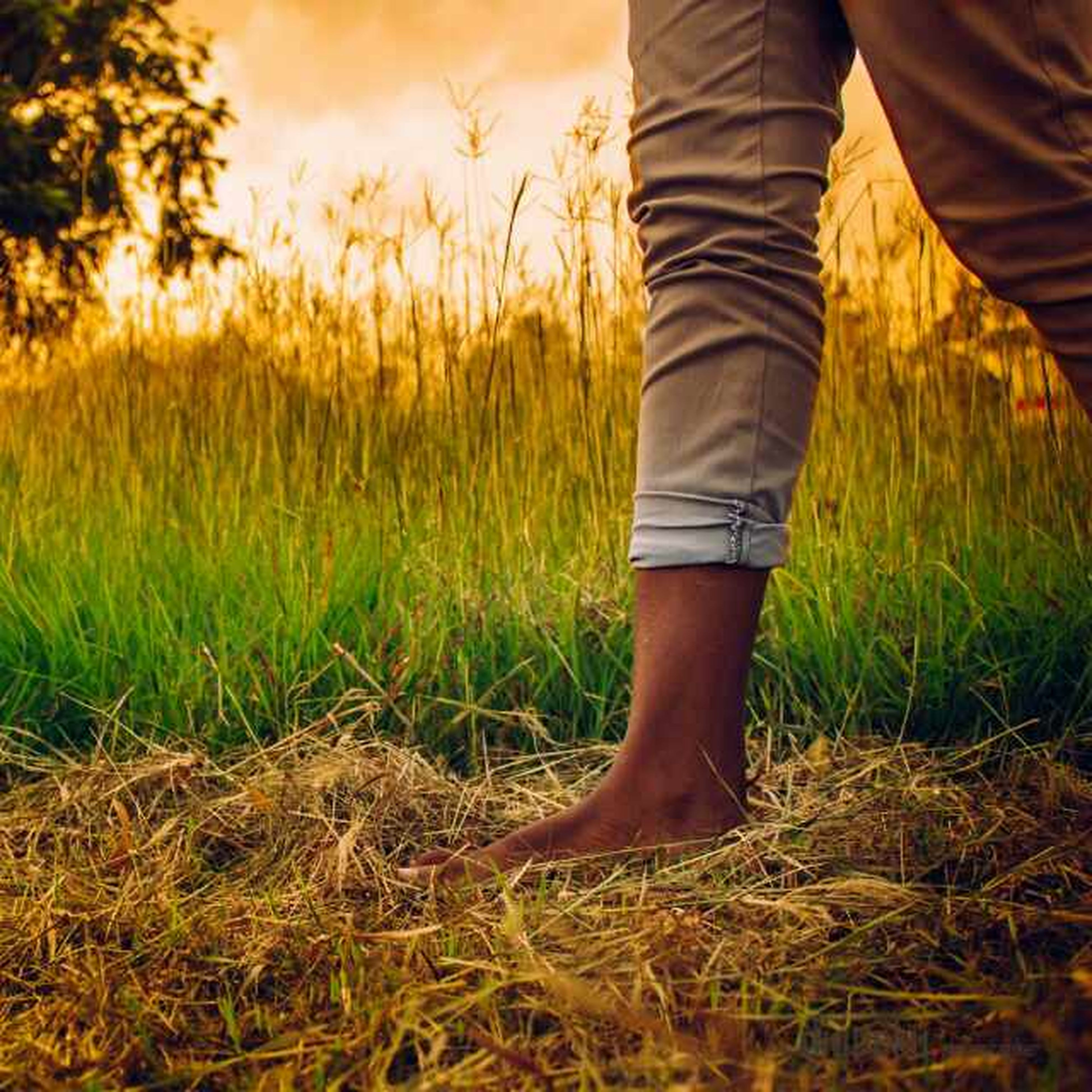 low section, person, field, grass, standing, lifestyles, leisure activity, landscape, men, shoe, grassy, nature, growth, plant, casual clothing, outdoors