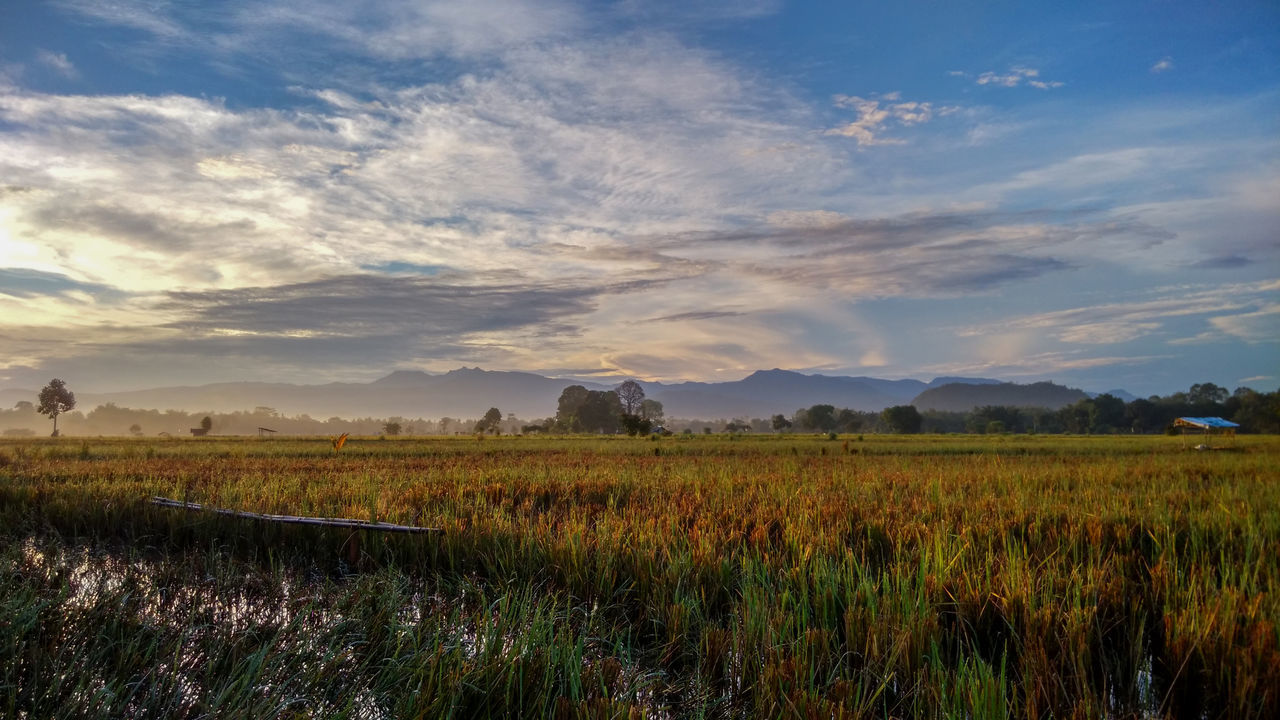 Agriculture Astronomy Beauty In Nature Cloud - Sky Day Extreme Weather Full Length Grass Landscape Morning Morning Sky Mountain Nature No People Outdoors Paddy Field Scenics Sky Sunrise Tranquil Scene Tranquility Water