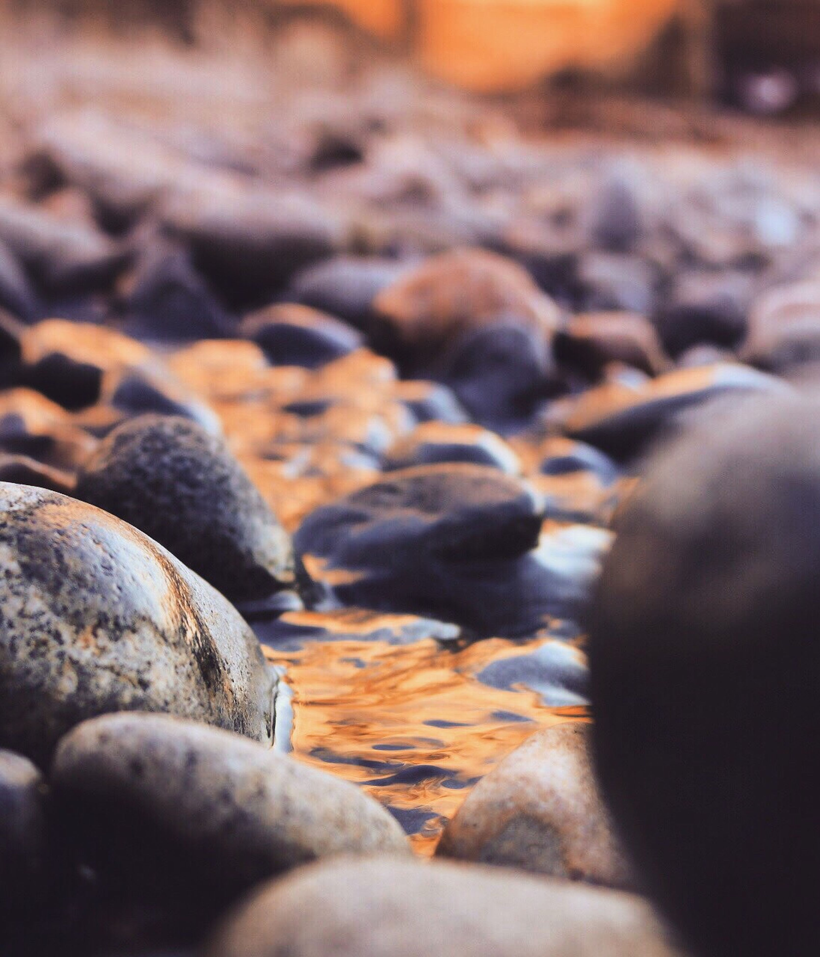 no people, beach, textured, close-up, nature, pebble beach, indoors, day