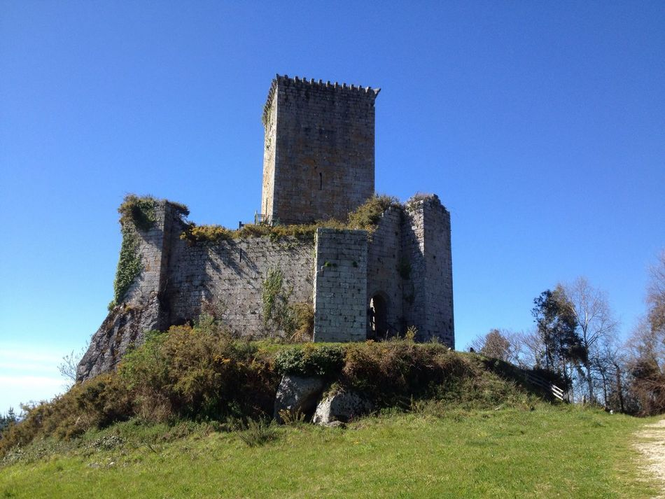 Castelo dos Andrade. Architecture History Built Structure Old Ruin Clear Sky Blue Ancient Building Exterior Ruined Abandoned Grass No People Day Fort Bad Condition Tree Outdoors Fortress Medieval Galicia