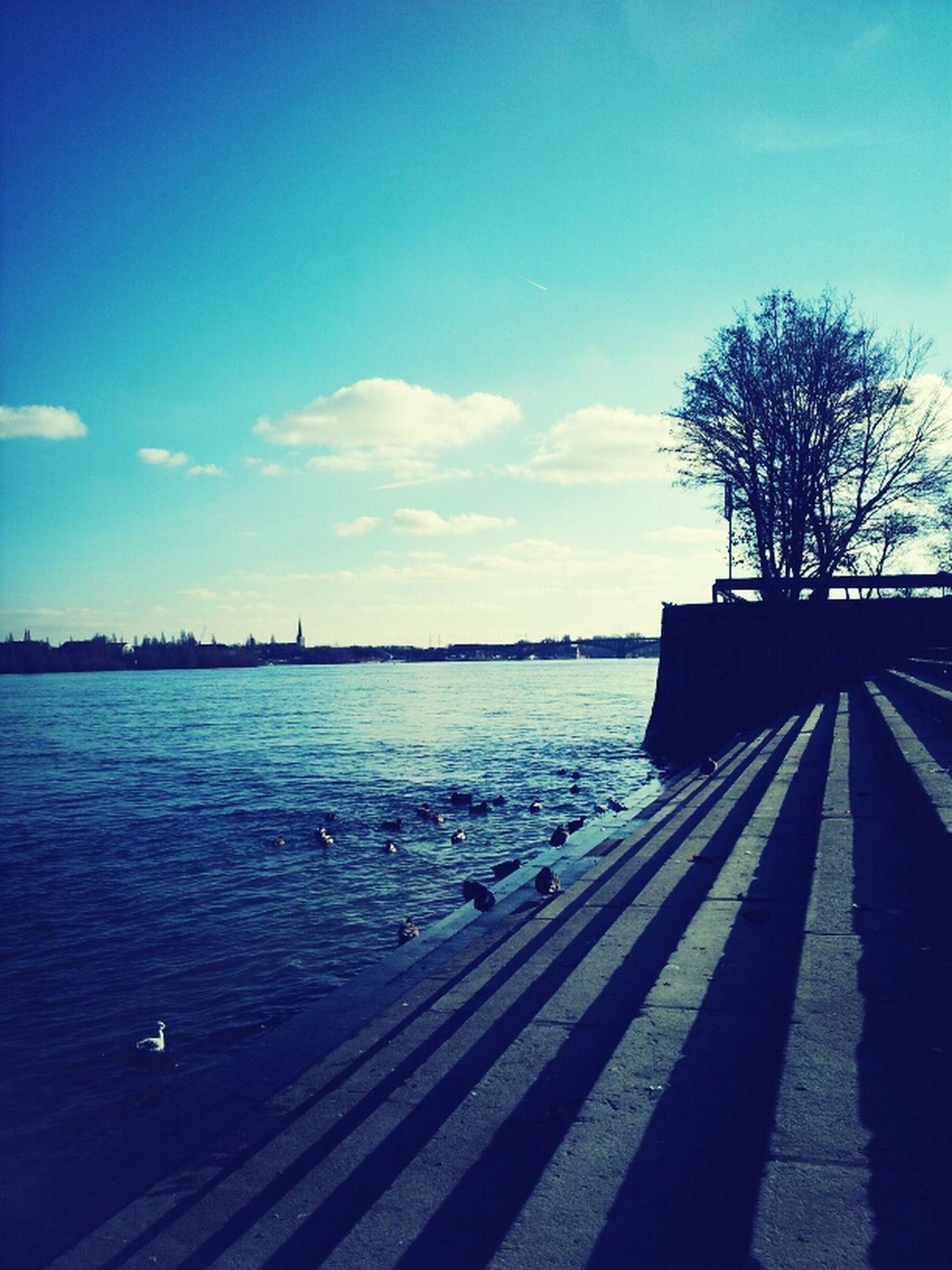 Rhein-Spaziergang