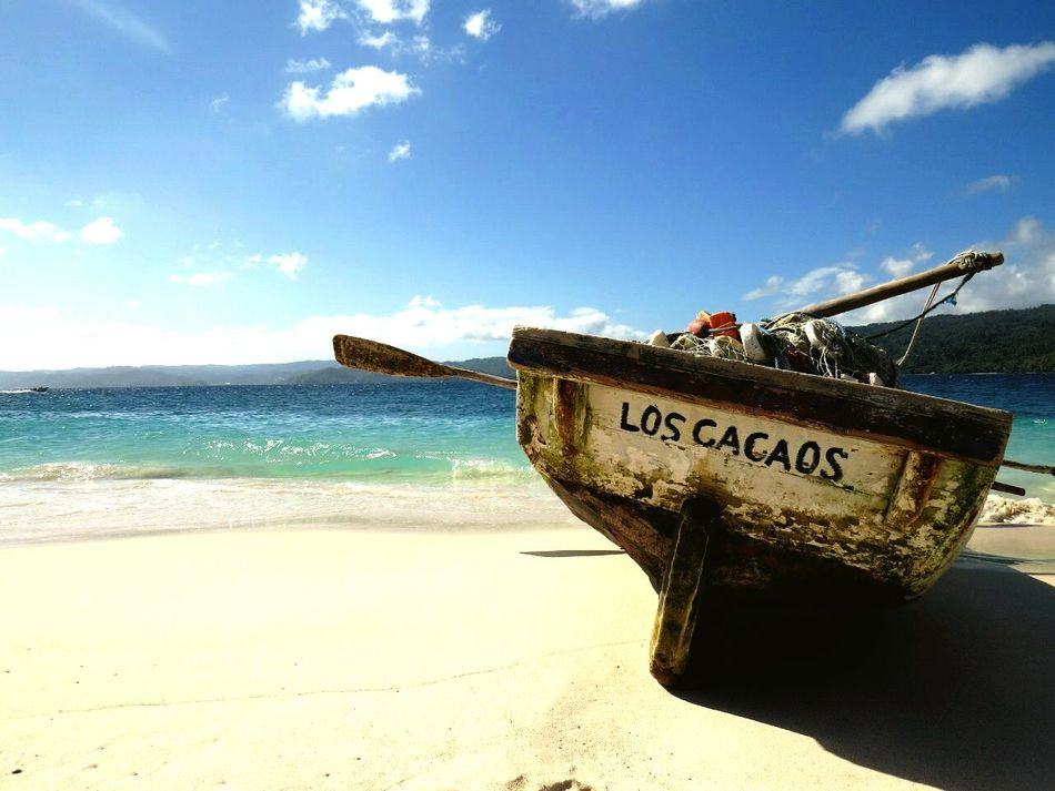 Ocean View Sweet Holidays Enjoying Nature Dominican Republic Dominican Relaxing Beachphotography