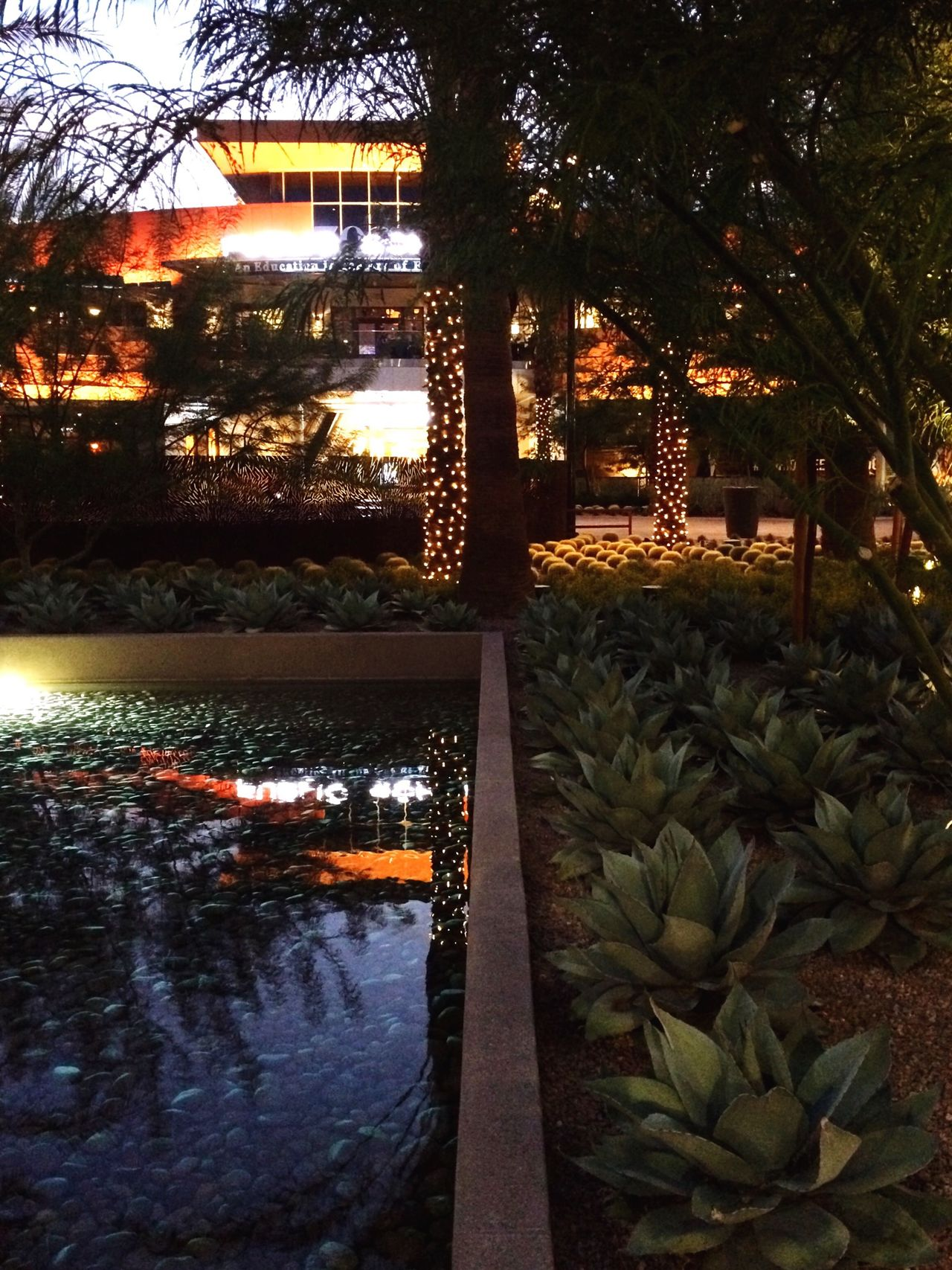 Mall Reflection Lights Urban Landscape Landscaping Pool