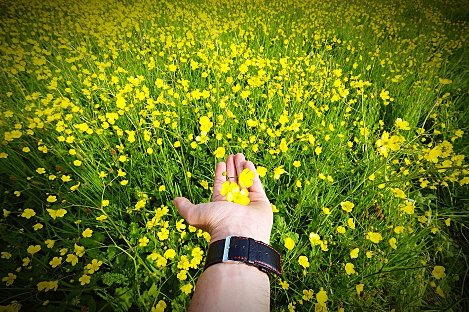 Bisgen Hello World Enjoying Life Relaxing Love EyeEm Best Shots EyeEm Nature Lover Sensizlik Istanbul EyeEm Masterclass