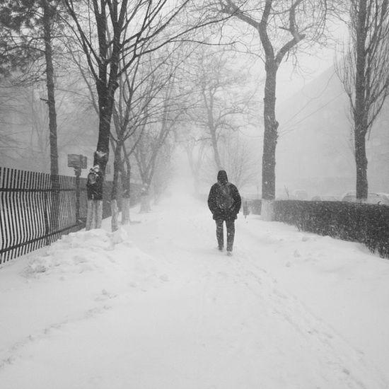 Кто там плакался что снега в  Ростов е нет