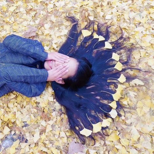 Ginkgo Leaves Fujifilm X-A3