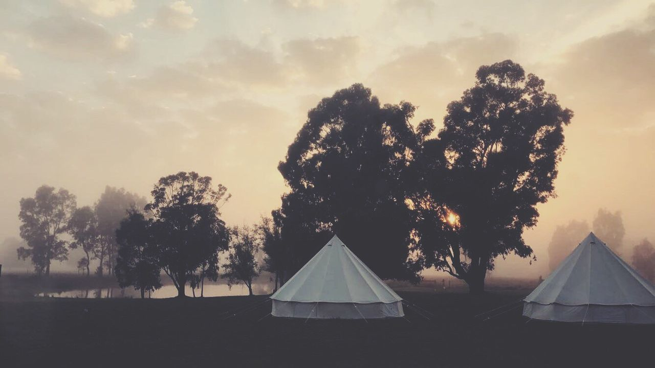 tree, tent, sunset, no people, outdoors, sky, nature, beauty in nature, landscape, day