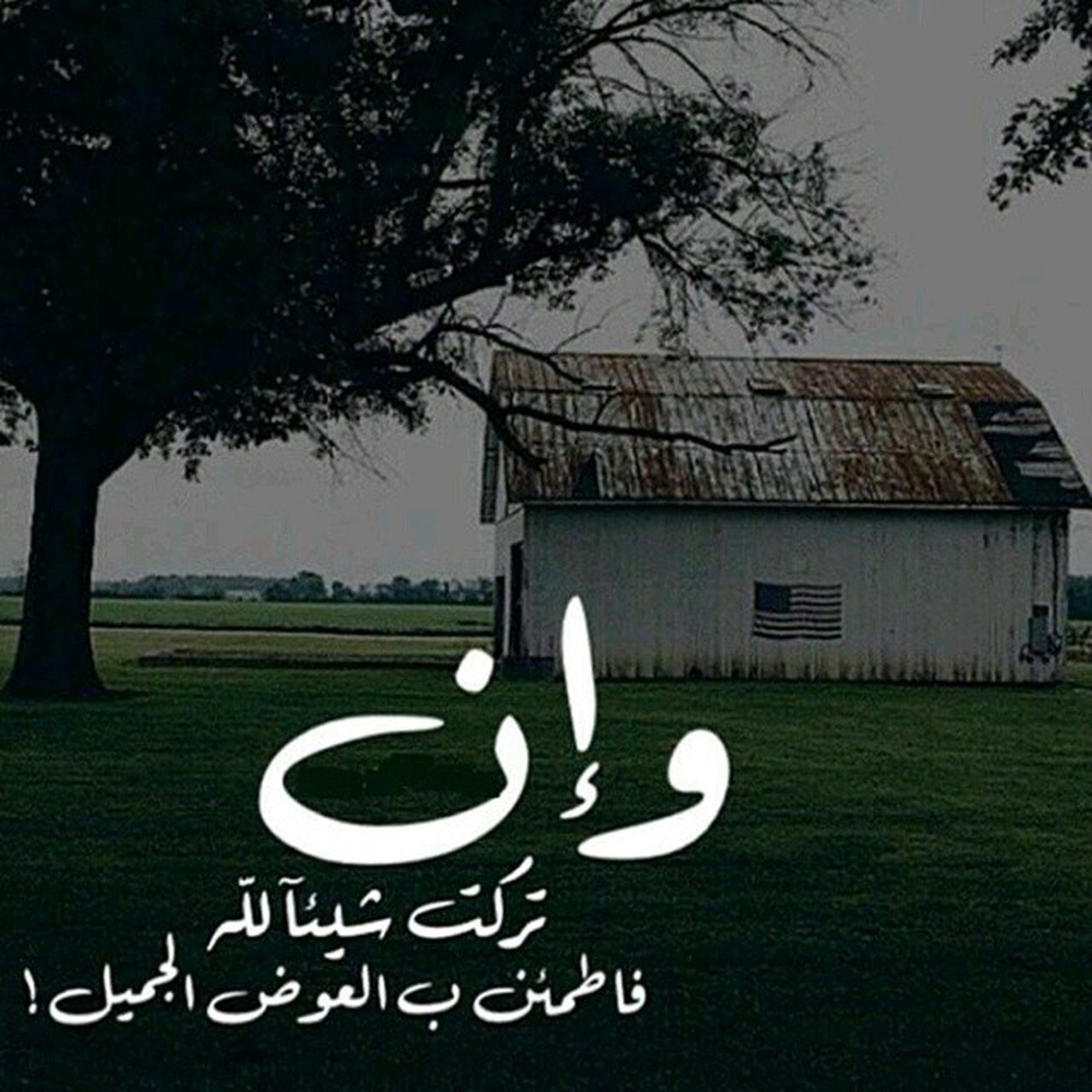 grass, tree, text, western script, art, art and craft, creativity, human representation, built structure, communication, architecture, animal representation, building exterior, green color, sky, no people, field, day, lawn