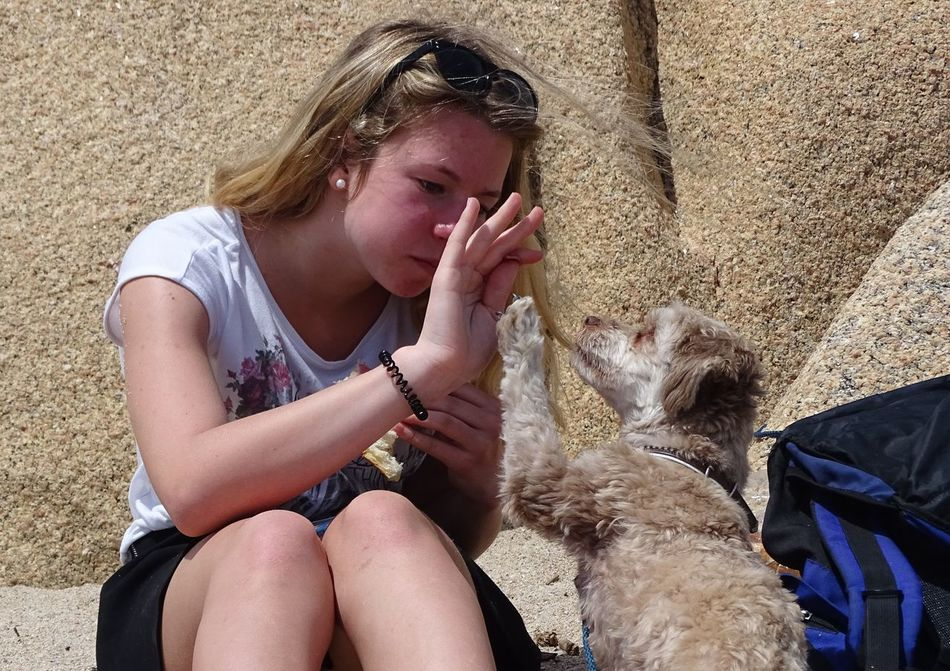 Beachphotography Cute Day Dog Enjoyment Girl Highfive Outdoors Person Portrait Sitting Sunglasses