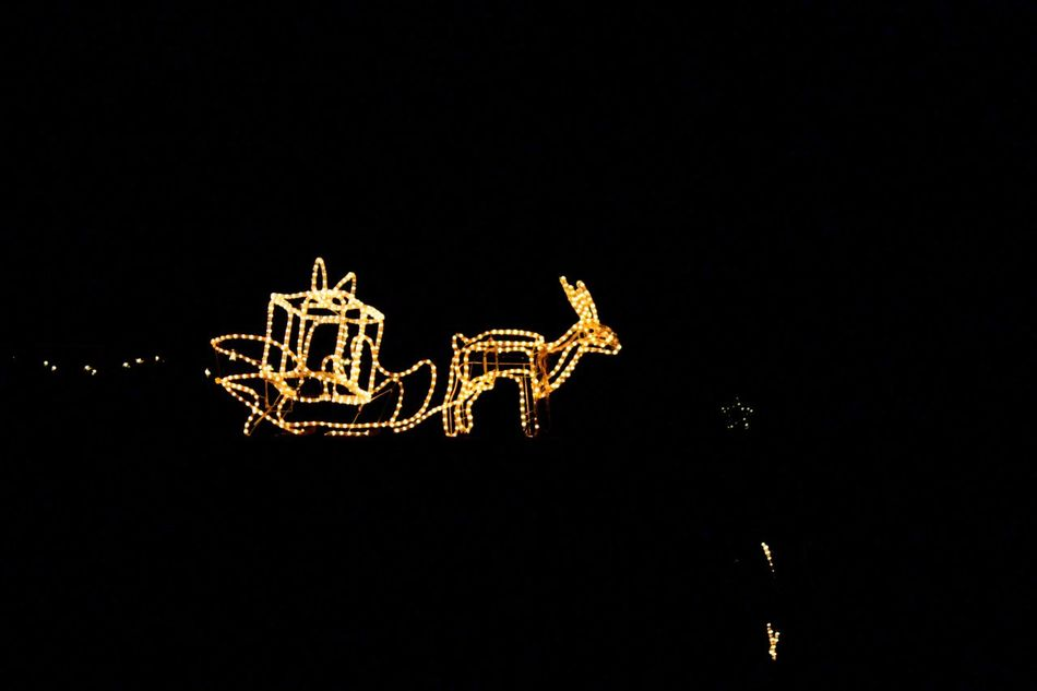 Arts Culture And Entertainment Christmas Lights Decoration Glowing Mid-air No Limits Showcase: November Single Object Rudolph Bruchmühlbach-Miesau Best Christmas Lights Learn & Shoot: After Dark