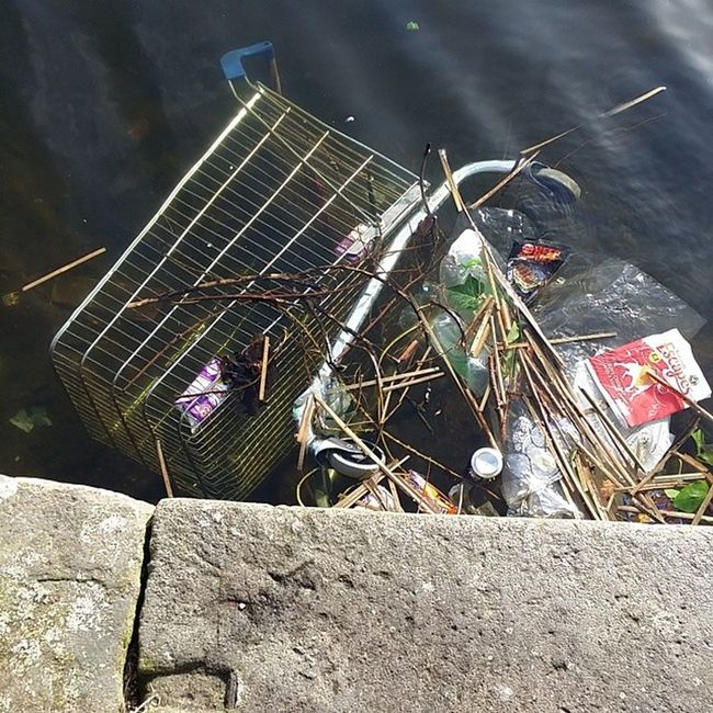 The things that people put in the canal Scum Idiots