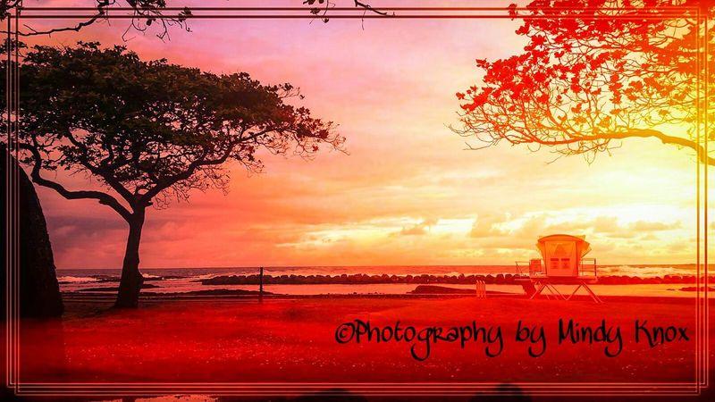 Life on a beach in Hawai'i Beachphotography Colorful Beaches Live Love Laugh Godscreation Luckywelivehawaii Lifesabeach  Bigislandhawaii Beach Sunset Photooftheday Aloha ❤