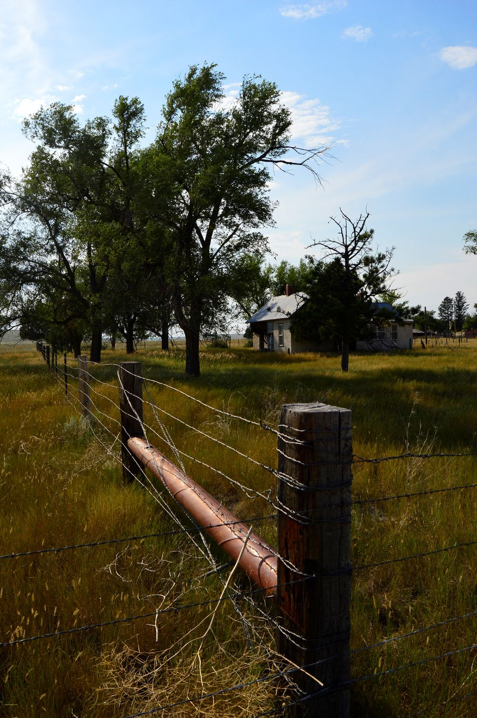Abandoned ranch August Afternoon Grass Is Green Hot Summer Day Long Shadow Of Late Afternoon No People North Of Lusk Wyoming Out In The Country Outdoors
