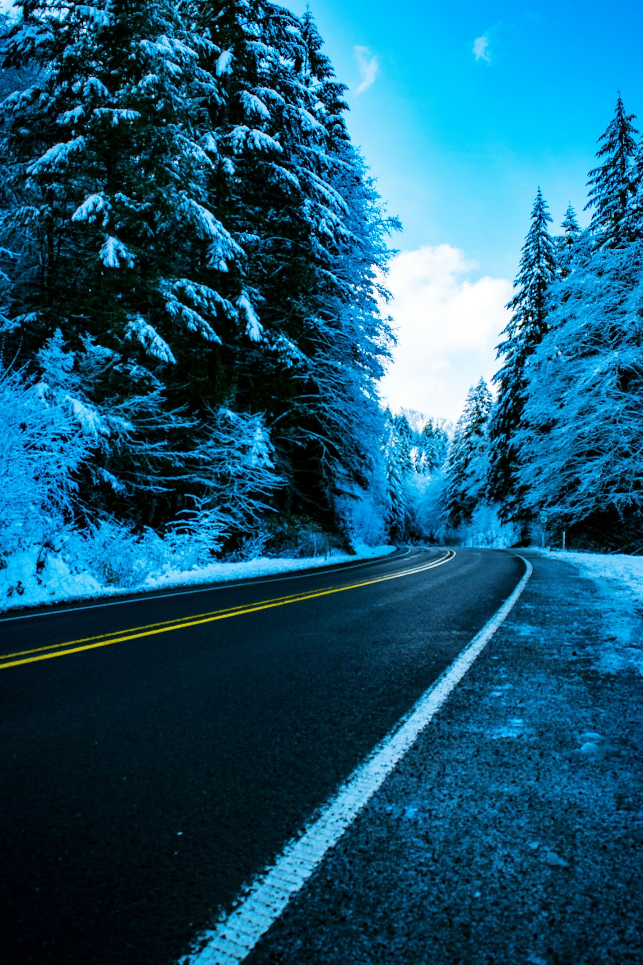 Morning commute Road Outdoors Highway Landscape Sky Snow Scenics Nature Landscape_photography From My Point Of View Oregon Oregonexplored Oregon Beauty Roadsidephotography Roadtrip Tillamook Forest