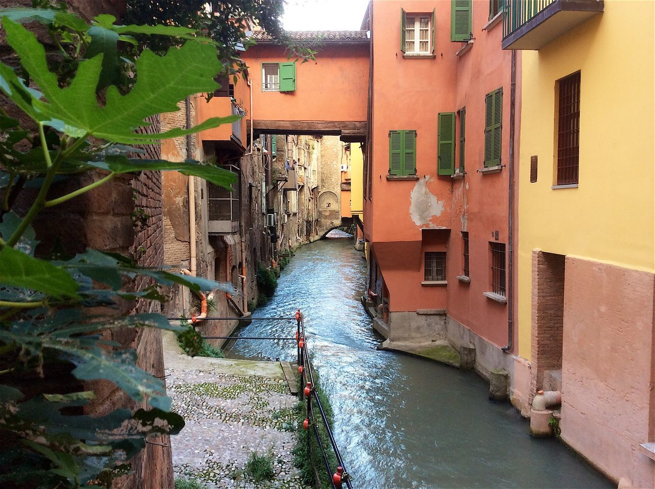 Bologna Italia River Architecture Building Built Structure Building Exterior Diminishing Perspective House Residential District Streetphotography Street Photography Water Window Pastel Power
