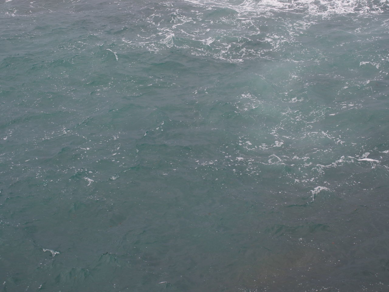 backgrounds, water, full frame, no people, nature, sea, day, outdoors, close-up
