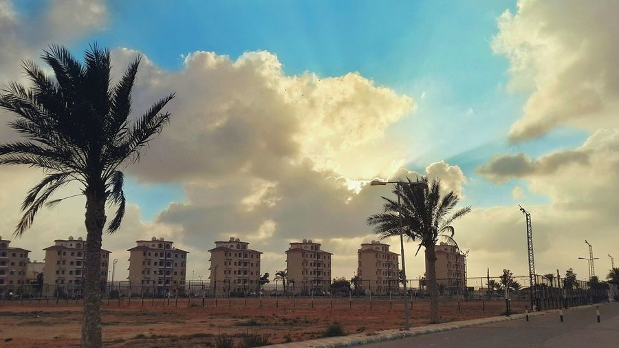 Nature + Architecture = Sheer Beauty. ❤ Cloud - Sky Sky Sky And Clouds Skyscape Skyporn Buildings Architecture Palm Tree Palm Trees Palmtree Field Fields Red Sand Red Sands Street No People Nature Outdoors Photograpghy  Outdoor Outdoor Photography Outdoors Finding New Frontiers Traveling Home For The Holidays