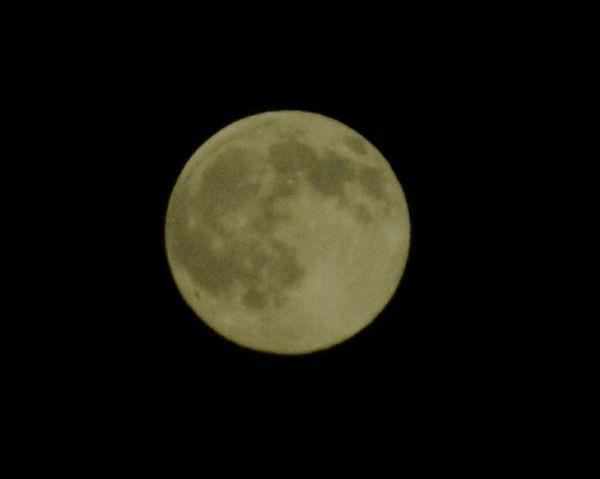 Moonporn Night Photography Light And Shadow Moon Moonlight Beautiful Moon  Goodnight Moon Full Moon Capture The Moment