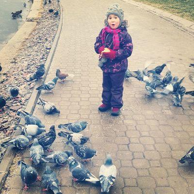 Шли кормить уток. Пруд замерз. Начали кормить голубей. Позже и утки подтянулись))