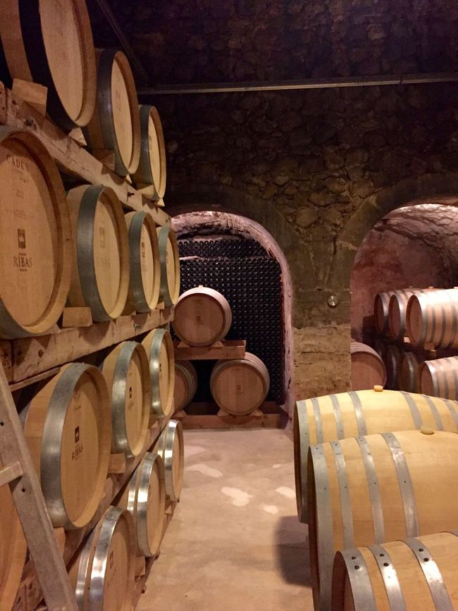 Arch Cellar Wine Winery
