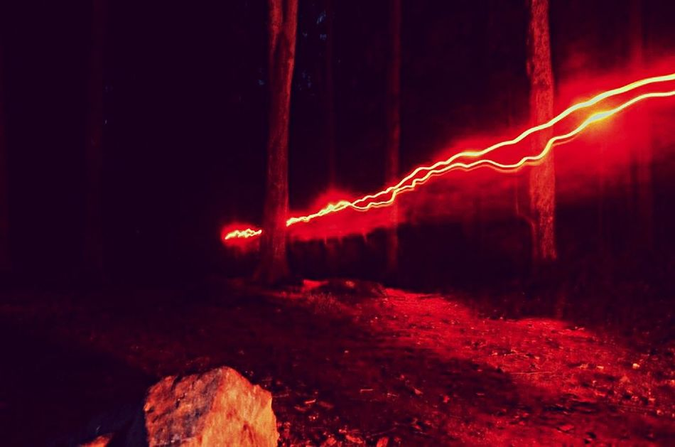 Connecticut Camping Light Painting Forrest Woods