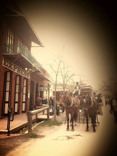 The Secret Spaces Horseback Riding Outdoors Architecture Victorian Times 1850' S America Gold Town Beauty Of Decay Real People Old Town