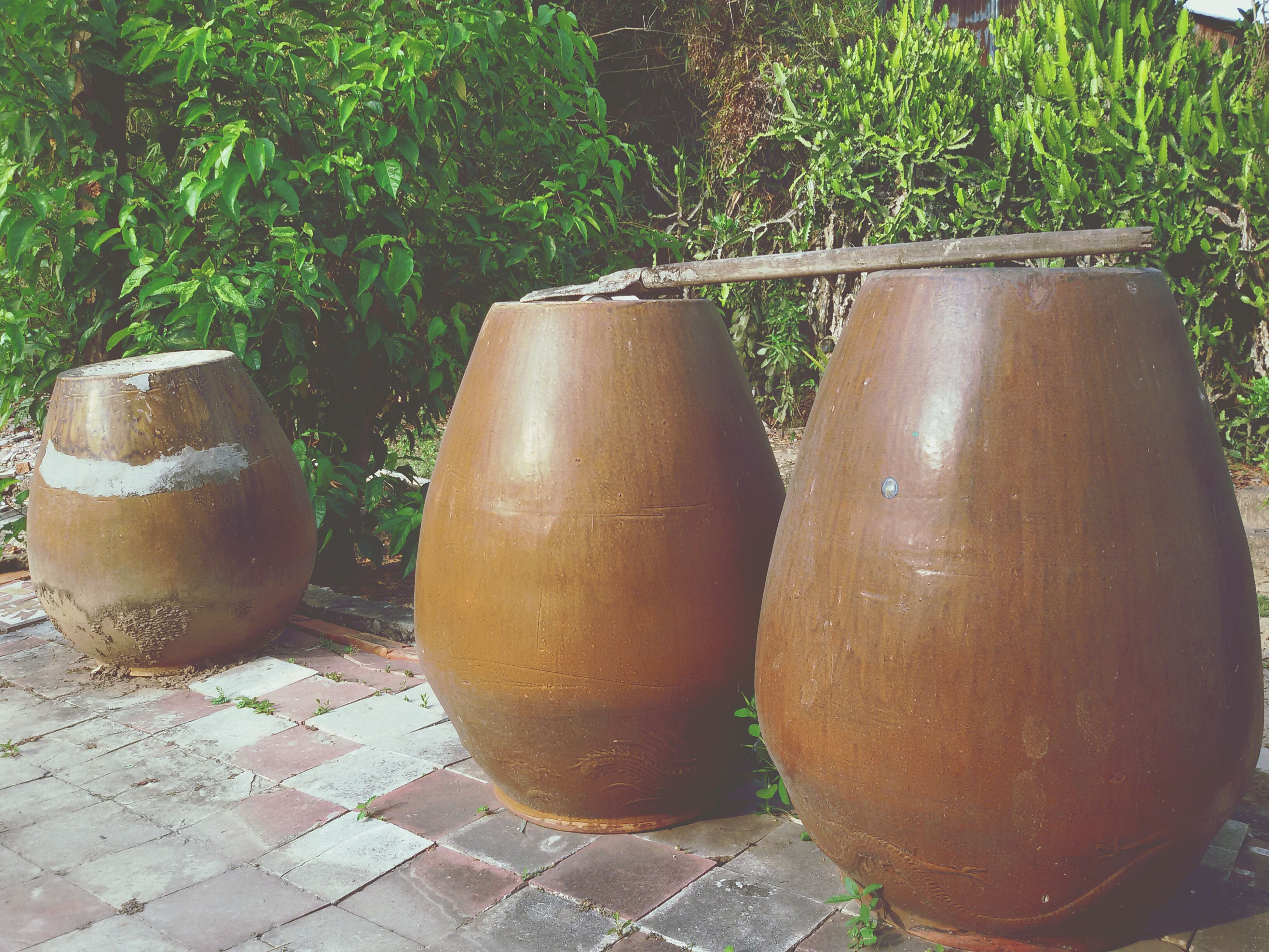 still life, food and drink, plant, potted plant, growth, no people, high angle view, day, close-up, outdoors, green color, freshness, side by side, container, metal, table, cobblestone, arrangement, front or back yard, sunlight